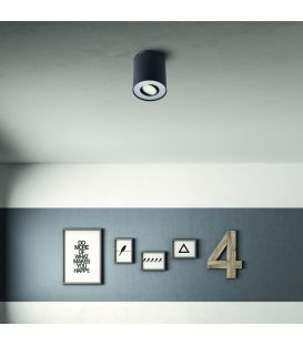 Griestu lampa PILLAR Black 56330/30/PN