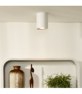 Griestu lampa TUBE 22952/01/31