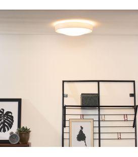 Griestu lampa LEX 30 08109/02/31