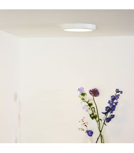 Flush Ceiling Light TENDO-LED Ø22 Balta
