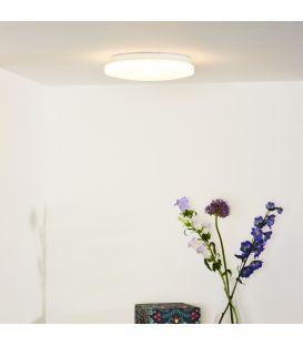 Griestu gaismeklis OTIS LED Ø26 79199/14/61