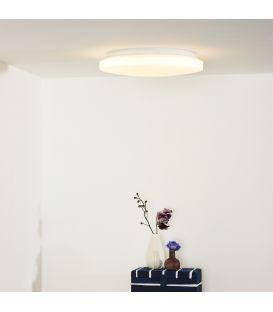 Griestu gaismeklis OTIS LED Ø34 79199/26/61