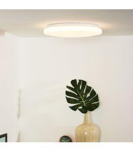 Griestu gaismeklis OTIS LED Ø39 79199/32/61