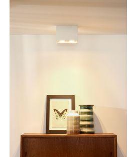 Griestu lampa TUBE 22952/02/31