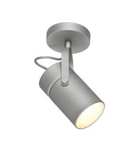 Griestu lampa ARUBA Silver 6016