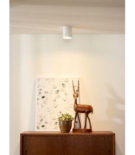 Griestu lampa BODI 09100/01/31