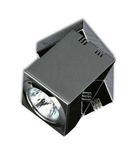 Griestu lampa PRACTYK 17013/1C