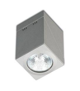 Griestu lampa PRACTYK 17013/1GP