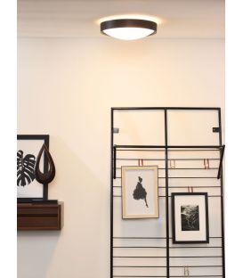Griestu lampa LEX 30 08109/02/30