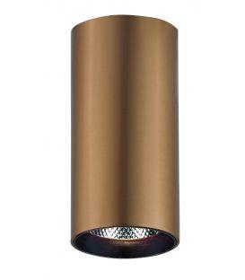 30W LED Griestu lampa NESTOR 4214402