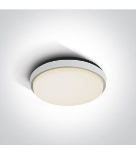 25W LED Griestu lampa White IP54 67362/W/W