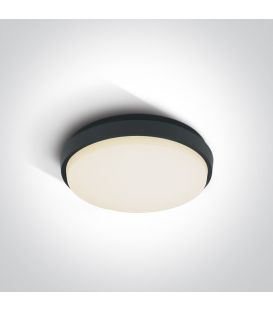 25W LED Griestu lampa Anthracite IP54 67362/AN/W