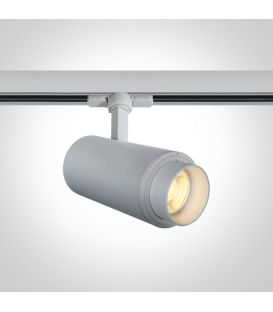 30W LED Apgaismojuma prožektoru ONE LIGHT 3F White 3000K 65650T/W/W