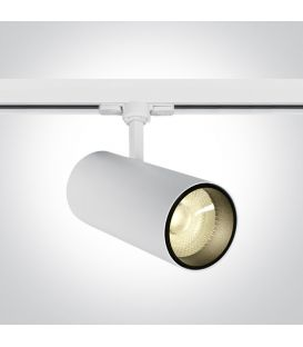 30W LED Apgaismojuma prožektoru ONE LIGHT 3F White 3000K 65642CT/W/W